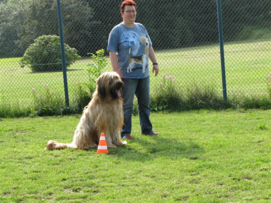 Rally Obedience Gruppe 1